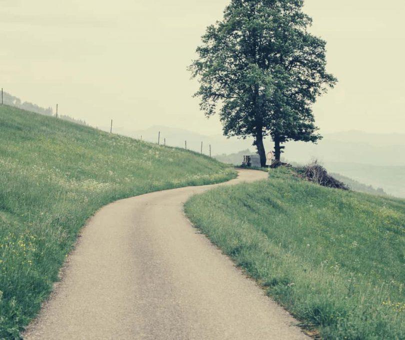 nieuwe wegen